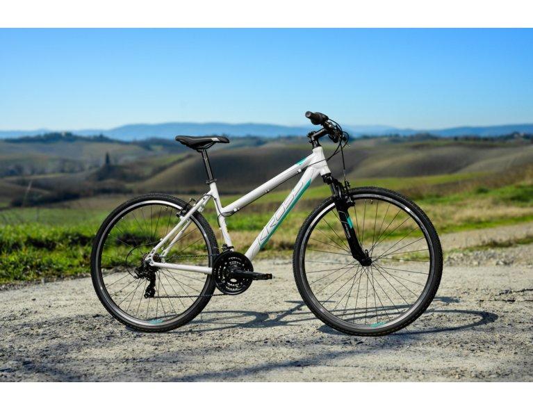 jaki rower górski kupić