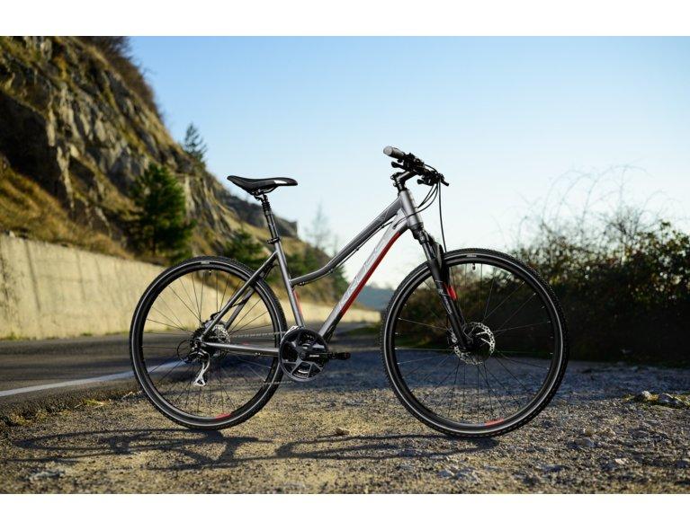 wygodny rower jak wybrać