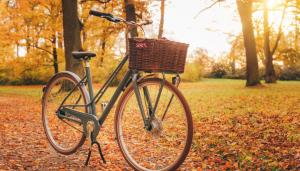 wygodna i komfortowa jazda na rowerze jesienią